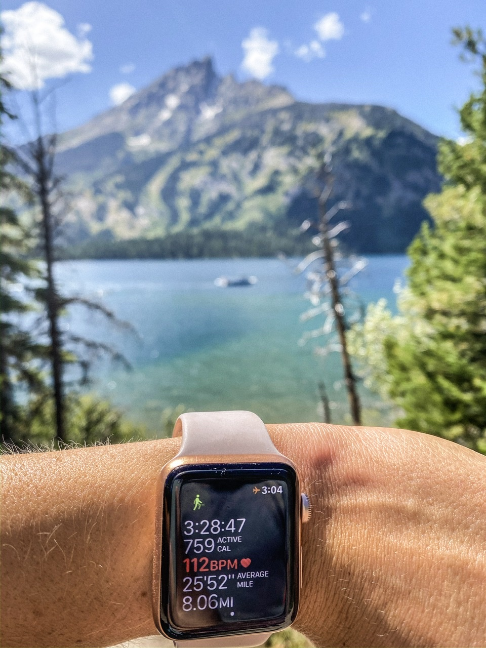 8 mile hike overlooking Jenny Lake which is located about 30 minutes outside of Jackson Hole