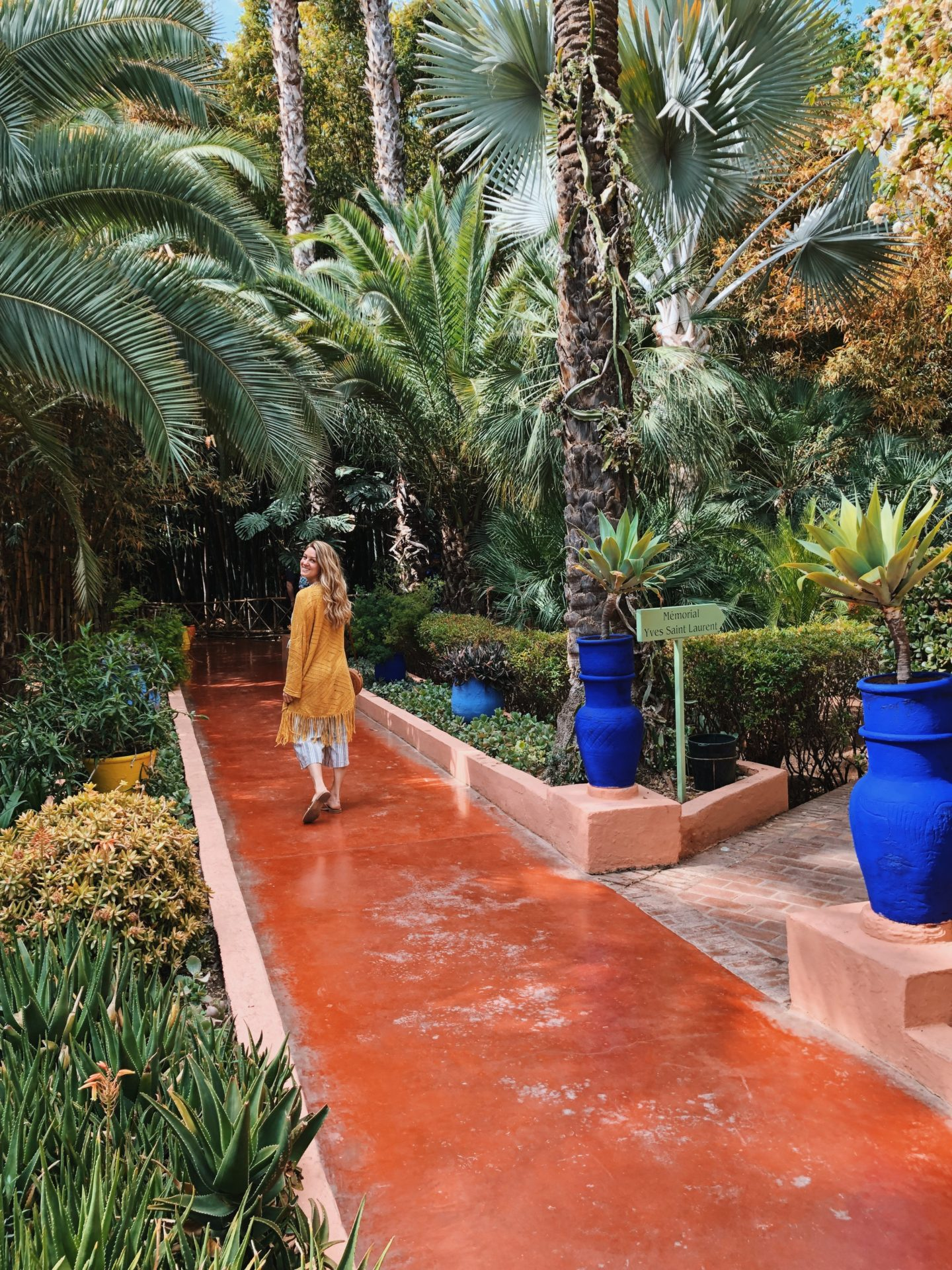 Bright colors and gorgeous plans, cactus and flowers galore at Majorelle Gardens.