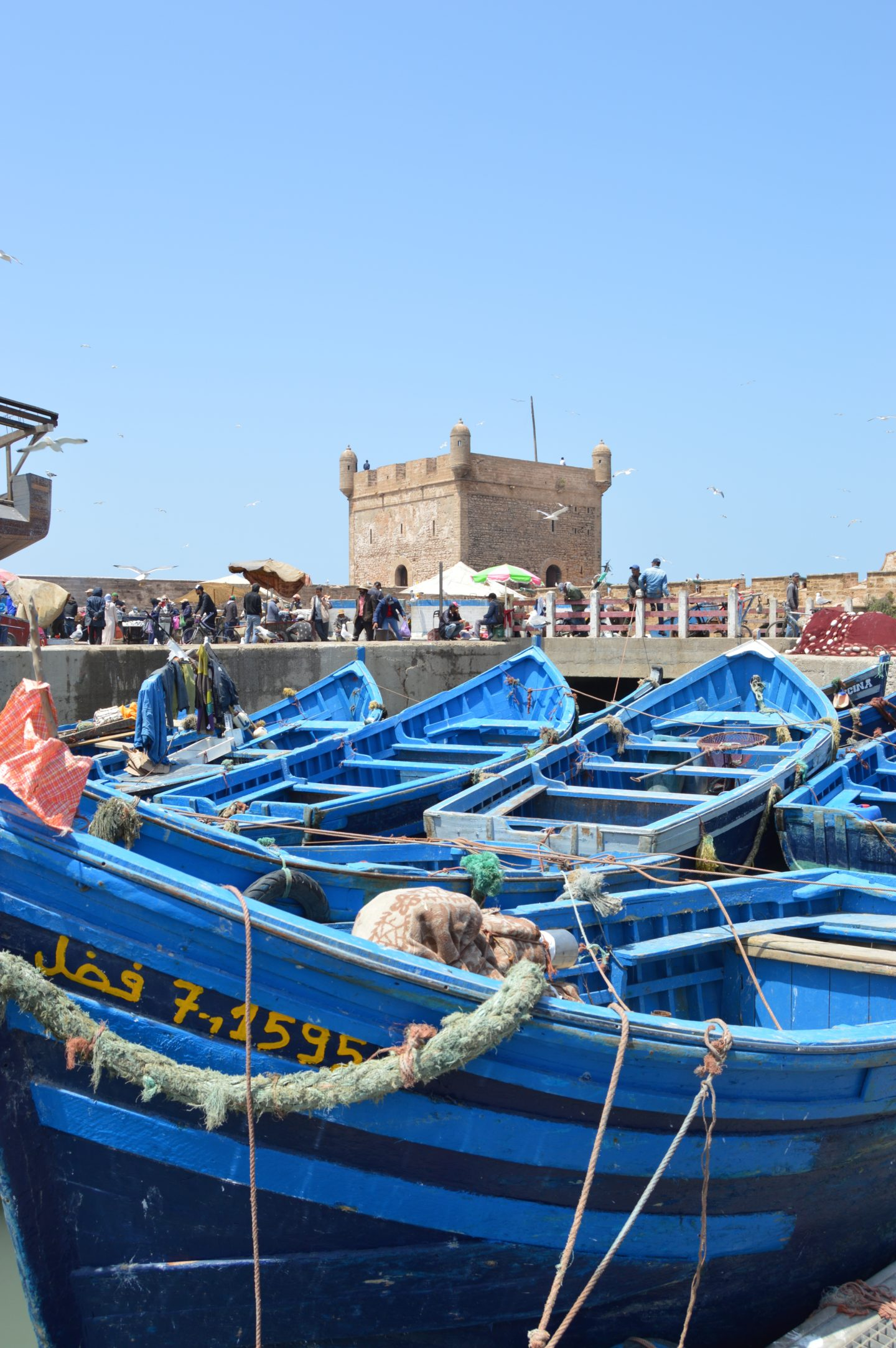 A gorgeous blue pop of color in an otherwise crisp white and tan coastal town in Morocco. The boats are all ready to go for the fishing industry that takes place from this city