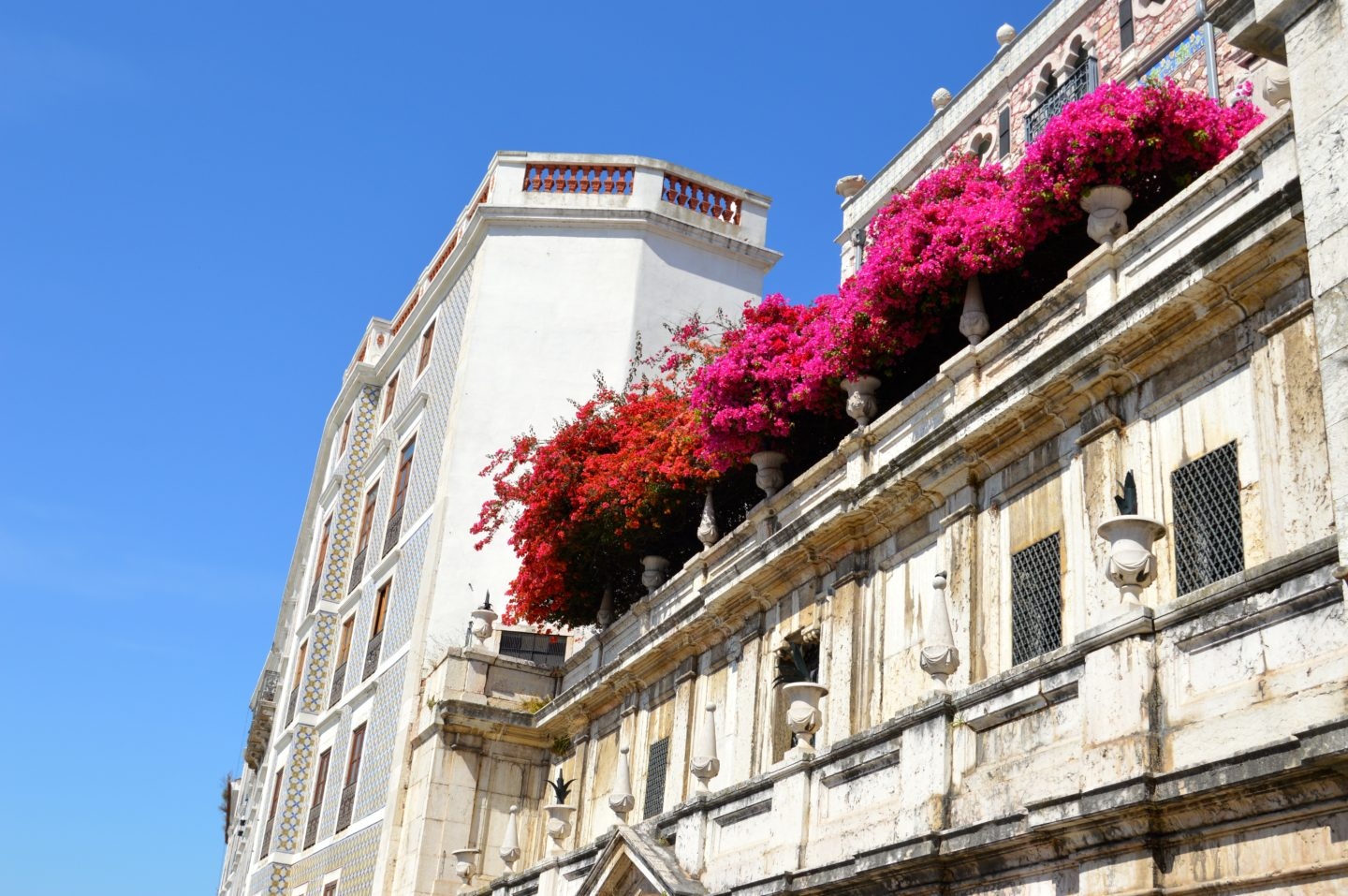 Beautiful and colorful architecture in Lisbon Portugal full of bright pink florals