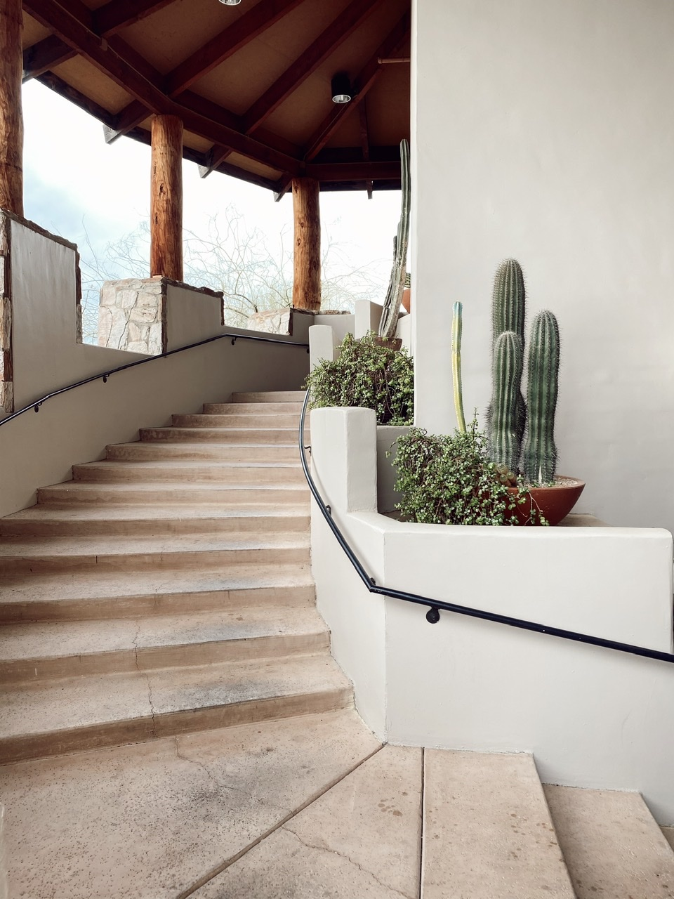 Simple and elegant property design that can be felt and appreciated all over the Civana Resort campus. Walking from class to class you are surrounded by these beautiful and unique cactus and white-washed walls.