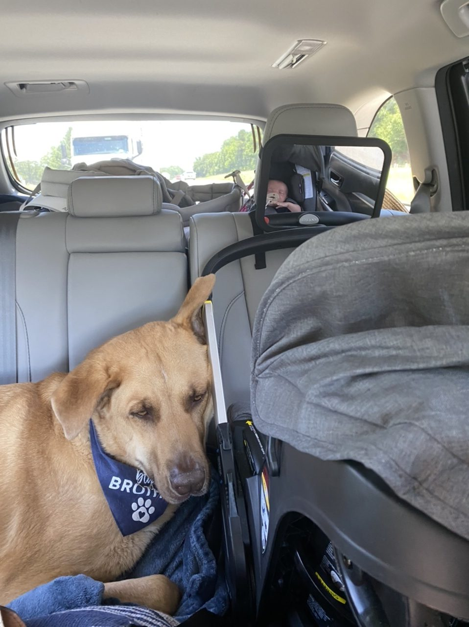 Doona travel stroller and car seat system coming in huge on our first long road trip